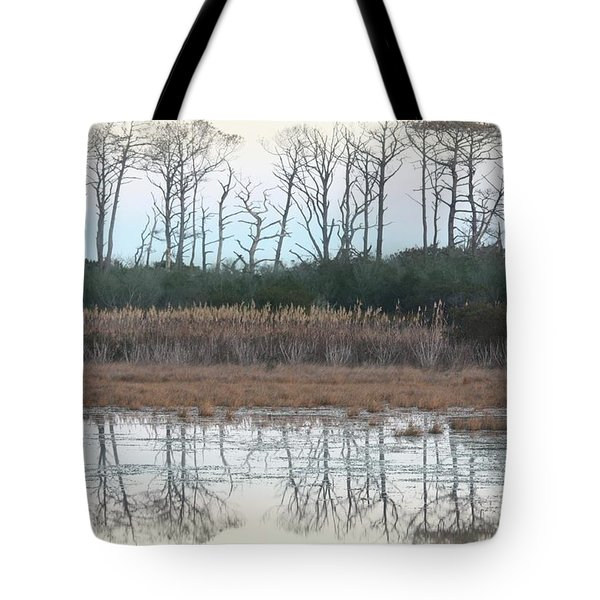 Reflections Winter Tote Bag