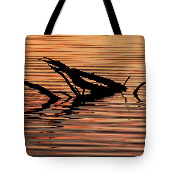 Reflective Abstract Tote Bag