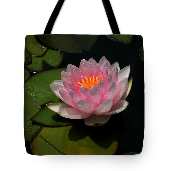 Refreshing Tote Bag by Doug Norkum