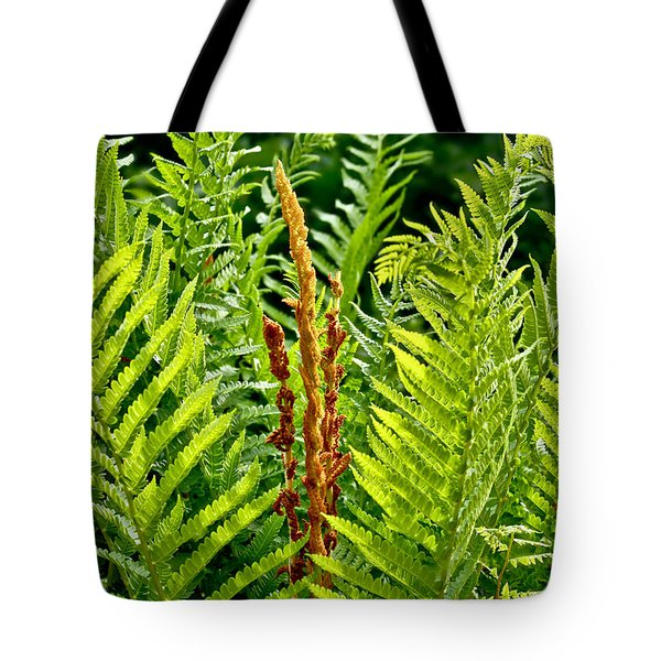 Refreshing Fern In The Woodland Garden Tote Bag