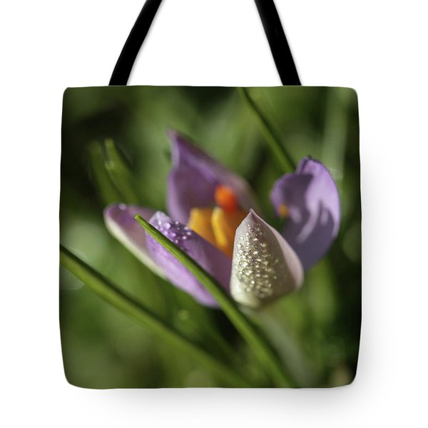 Tote Bag featuring the photograph Refreshments  by Connie Handscomb