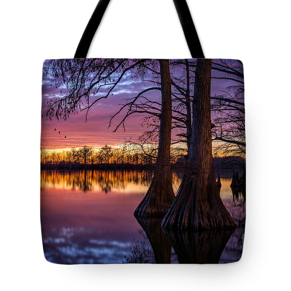 Refuge Tote Bag by Anthony Heflin