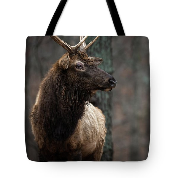 Tote Bag featuring the photograph Regal by Andrea Silies