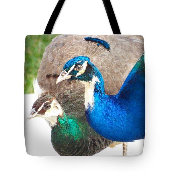 Regal Pair Tote Bag