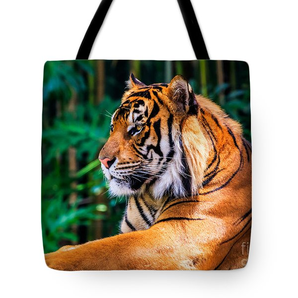 Regal Tiger Tote Bag
