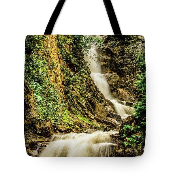 Reid Falls Tote Bag