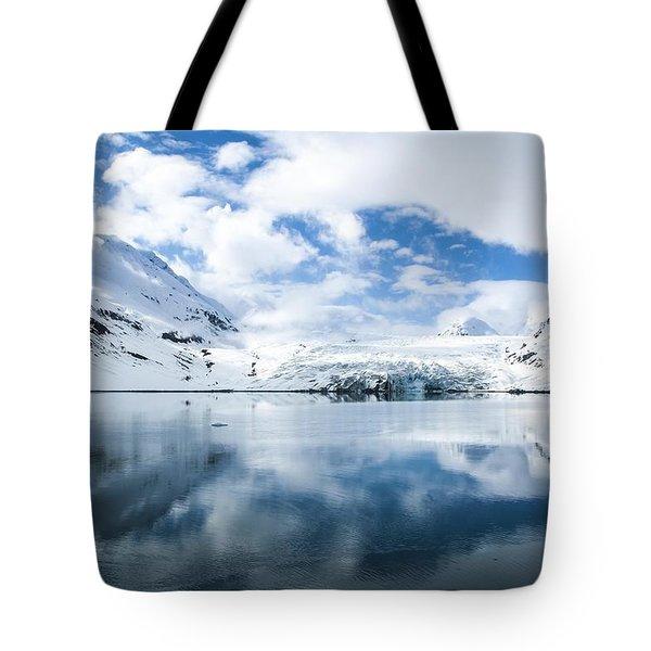 Reid Glacier Glacier Bay National Park Tote Bag