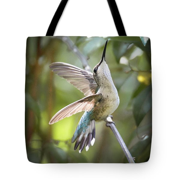 Rejoice Tote Bag by Amy Porter