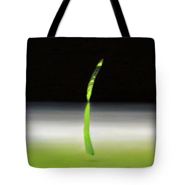 Relativity  Tote Bag by Antonio Ortiz