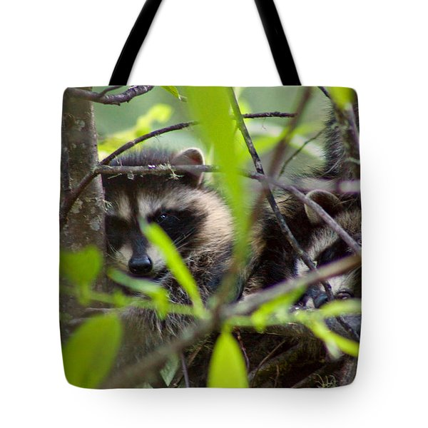 Relaxing In A Tree Tote Bag