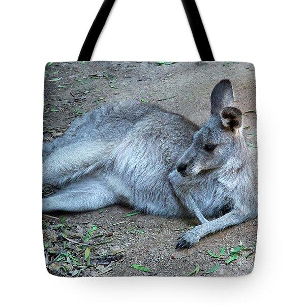 Tote Bag featuring the photograph Relaxing Kangaroo by Miroslava Jurcik