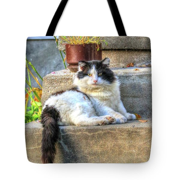 Relaxing On The Stairs Tote Bag