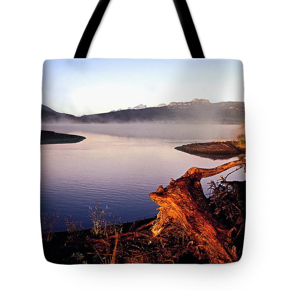 Remains Of The Day Tote Bag