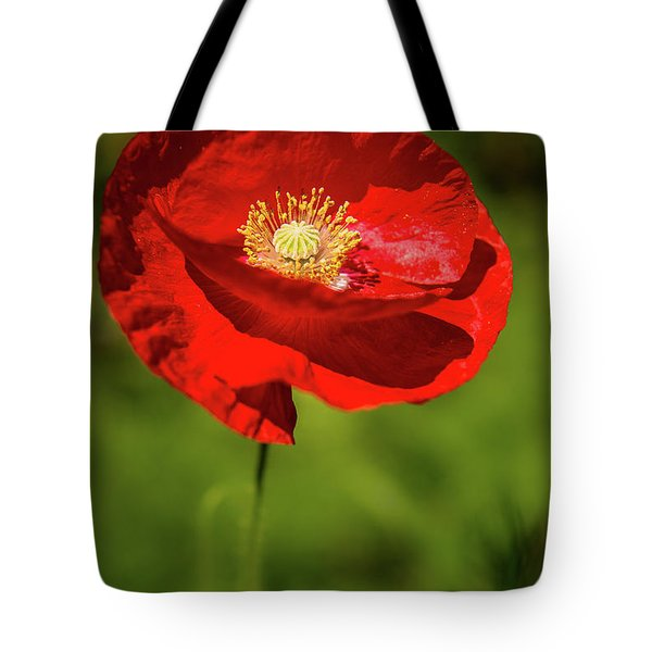 Tote Bag featuring the photograph Remembering by Onyonet  Photo Studios