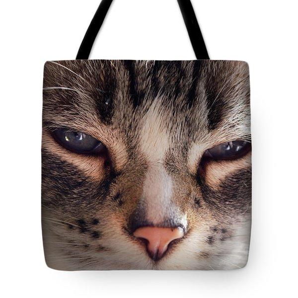 Remi Cat Tote Bag