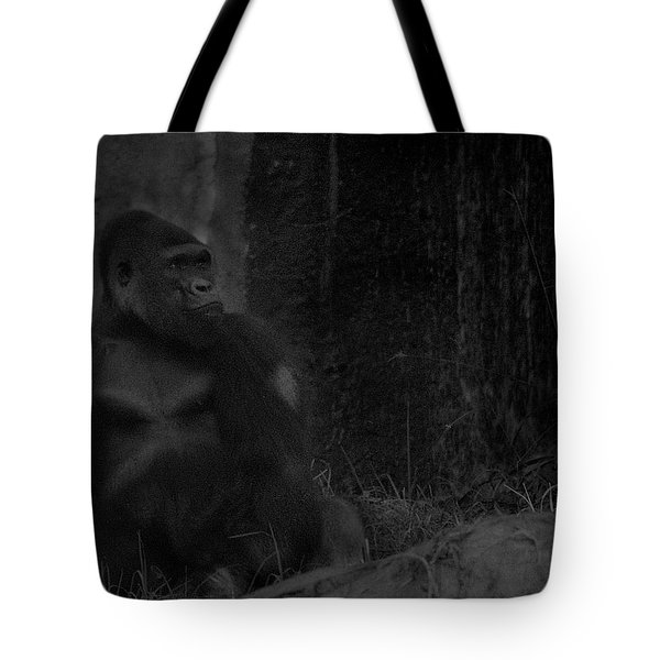 Reminiscent Of Home Tote Bag