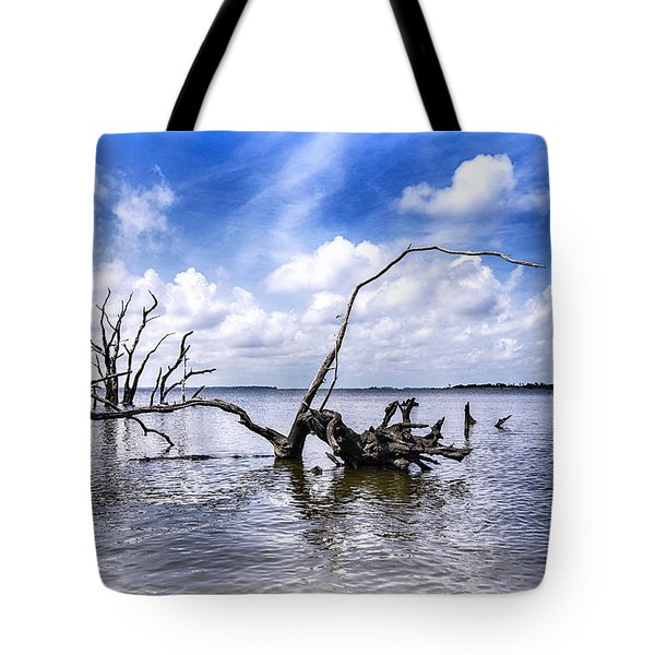 Remnants Tote Bag by Alan Raasch