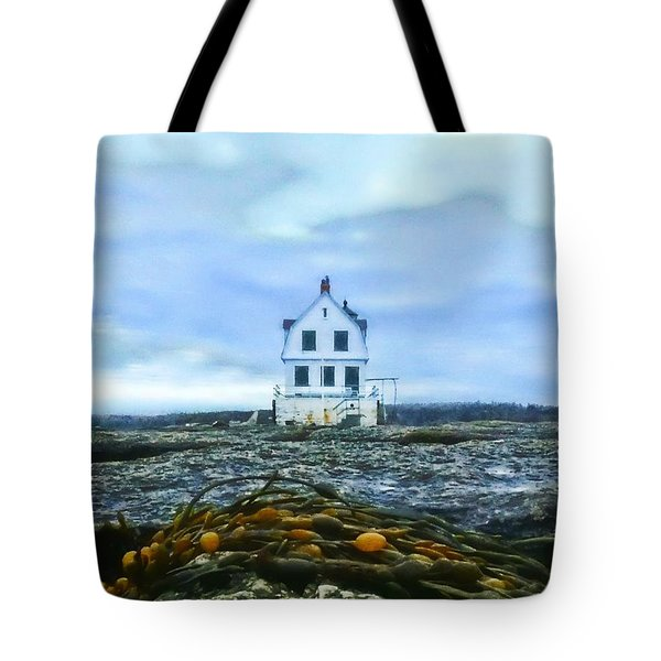 Remnants On The Rocks Tote Bag