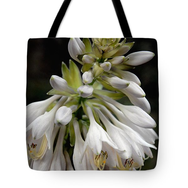 Tote Bag featuring the photograph Renaissance Lily by Marie Hicks