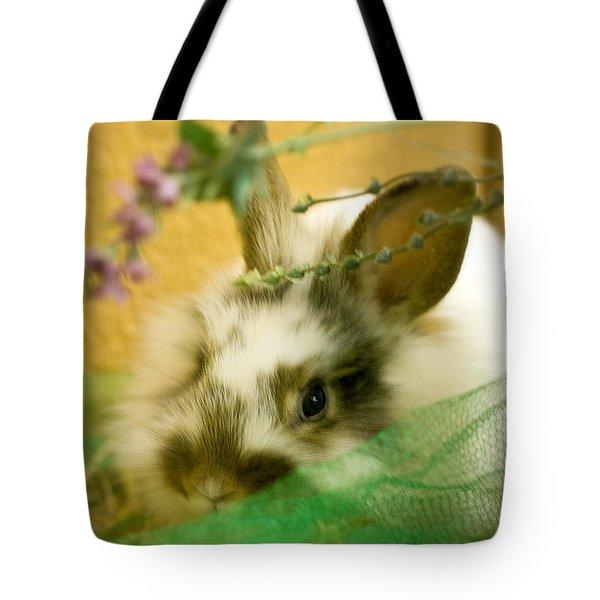 Renewal Tote Bag by Lois Bryan