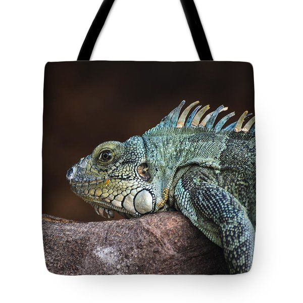 Reptile Tote Bag by Daniel Precht