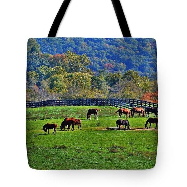 Rescue Horses Tote Bag