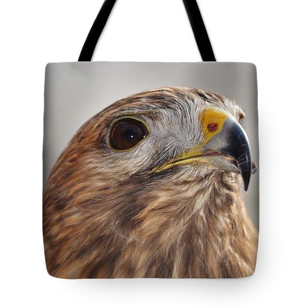Rescued Hawk Tote Bag