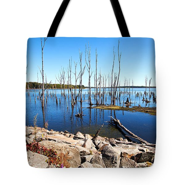 Tote Bag featuring the photograph Reservoir by Angel Cher