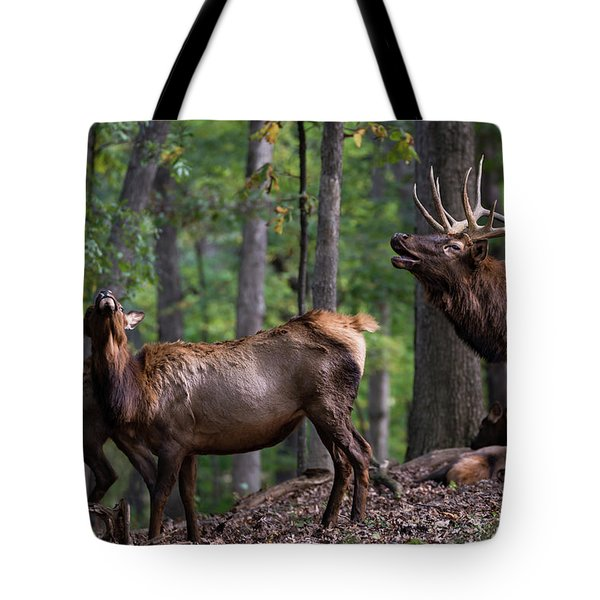 Tote Bag featuring the photograph Responding To The Call by Andrea Silies