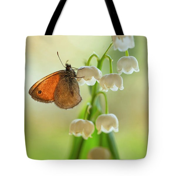 Tote Bag featuring the photograph Rest In The Morning Sun by Jaroslaw Blaminsky