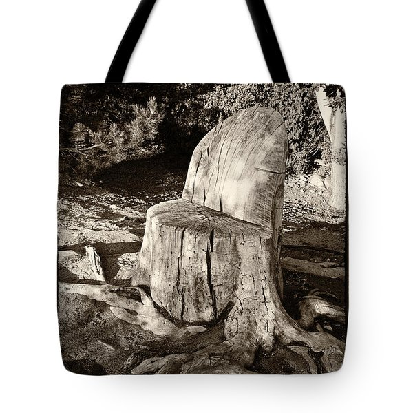 Tote Bag featuring the photograph Rest Stop by Vinnie Oakes