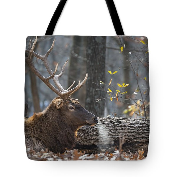 Resting Tote Bag by Andrea Silies