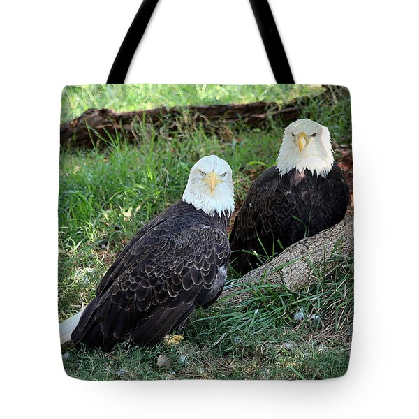 Tote Bag featuring the photograph Resting Bald Eagles by Sheila Brown