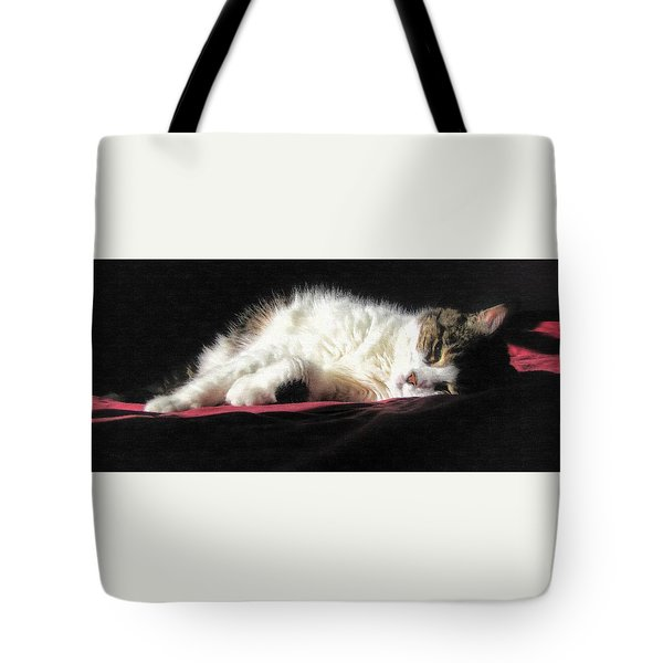 Resting Cat Tote Bag