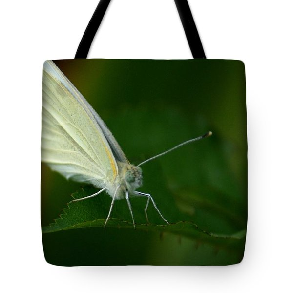 Tote Bag featuring the photograph Resting by Cathy Harper