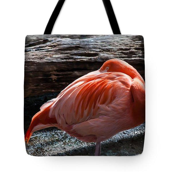 Resting Flamingo 8331 Tote Bag