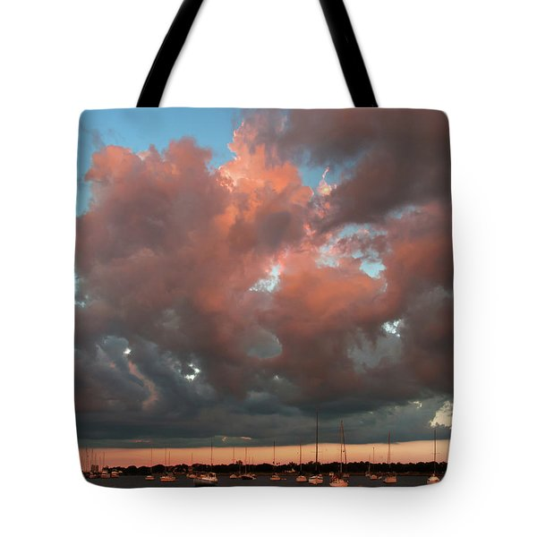 Resting In The Sunset Tote Bag by Carolyn Dalessandro