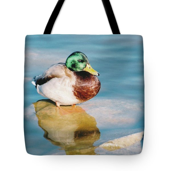 Tote Bag featuring the photograph Resting Mallard by Tom Potter