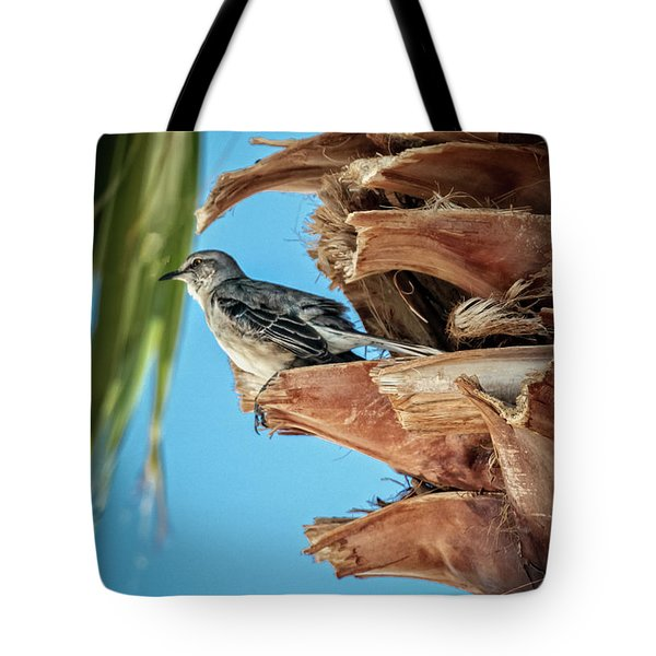 Tote Bag featuring the photograph Resting Mockingbird by Robert Bales