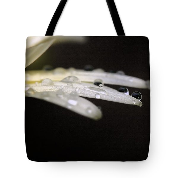 Tote Bag featuring the photograph Resting On The Edge by Angela Rath