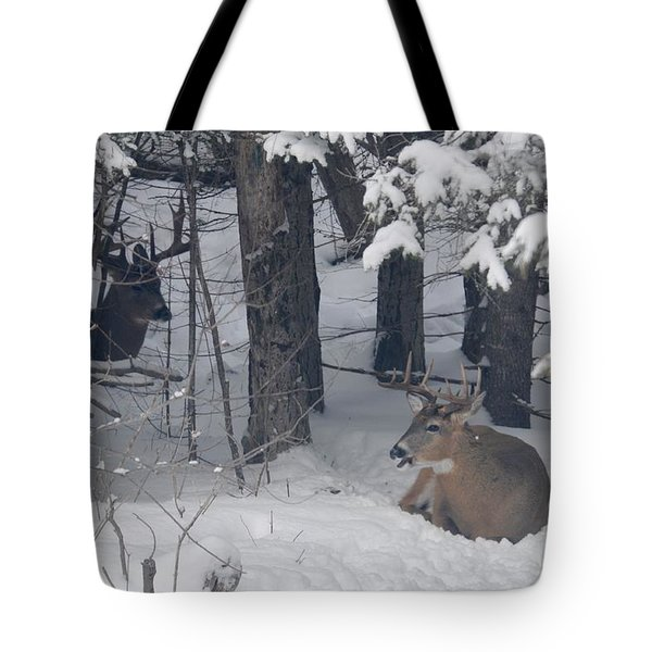 Resting Tote Bag by Sandra Updyke