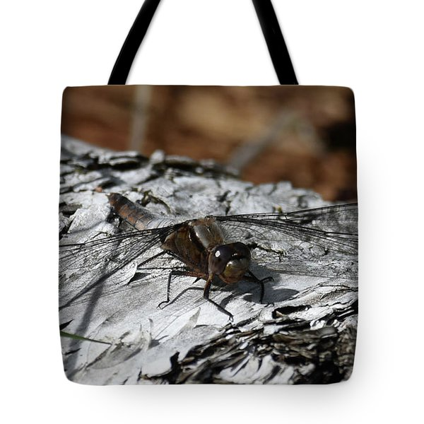 Tote Bag featuring the photograph Resting Spot by Sally Sperry
