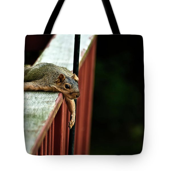 Resting Squirrel Tote Bag