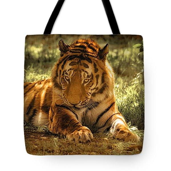 Resting Tiger Tote Bag by Chris Boulton
