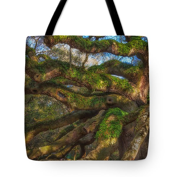 Resurrection Fern Dons Angel Oak Tote Bag by Patricia Schaefer