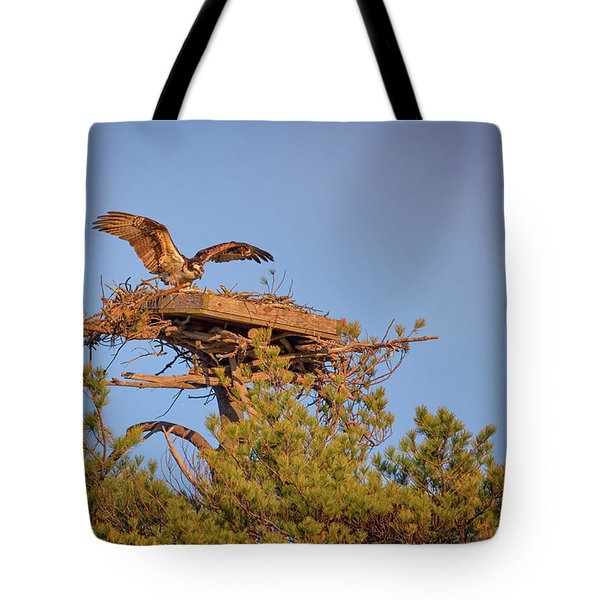Tote Bag featuring the photograph Returning To The Nest by Rick Berk