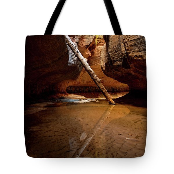 Tote Bag featuring the photograph Reunion by Dustin LeFevre
