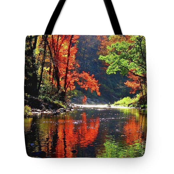 Revealed Tote Bag by Sheila Ping