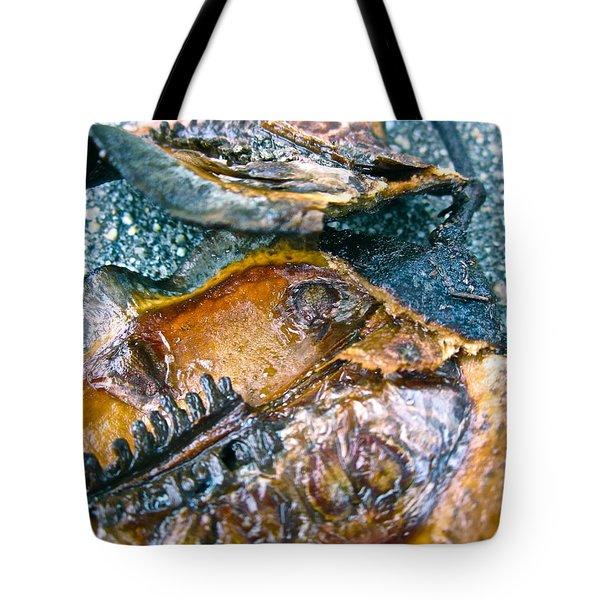 Revealing Tree Pod Tote Bag by Gwyn Newcombe