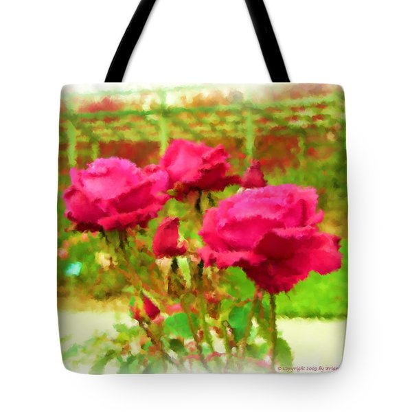 r.'Forgotten Dreams' Tote Bag